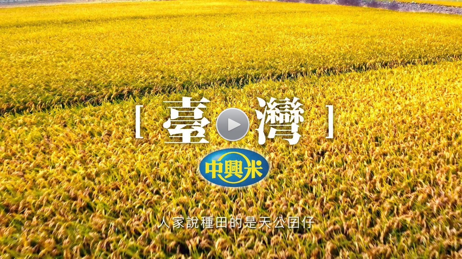企業價值 - 創新全球米食文化、永續在地農業經營、滿足人類健康幸福需求