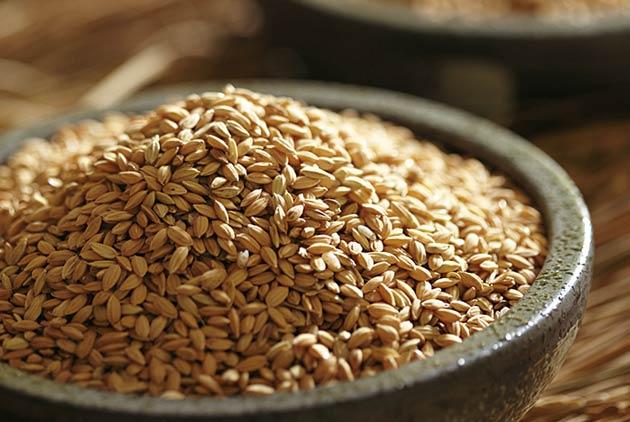 怕胖長期不吃榖米 脾胃損問題多