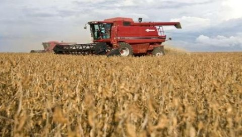巴西今年穀物產量預計將創新高